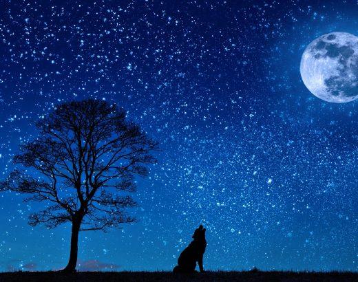 Dėl artėjančios mėnulio pilnaties ir neptūno aspekto – galimas perdėtas jautrumas, n…