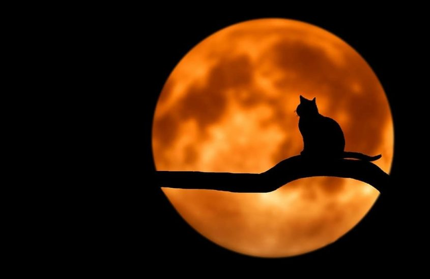 And again it's full moon… 😄