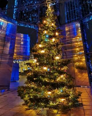 Christmas Time 🤩🎄✨🎅 #nofilters #christmastime #cathedralsquare #xmastree #christ